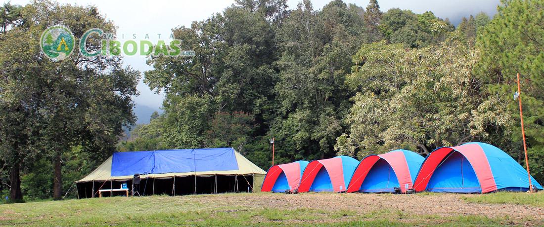 paket camping mandalawangi wisata cibodas